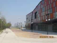 唐山友谊路商务景观照明工程