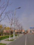 唐山动物园道路照明工程