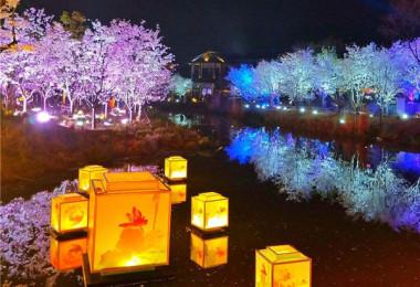 景区夜游项目开发分为哪些步
