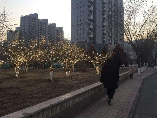 2019年迁西县城区节日亮化工程