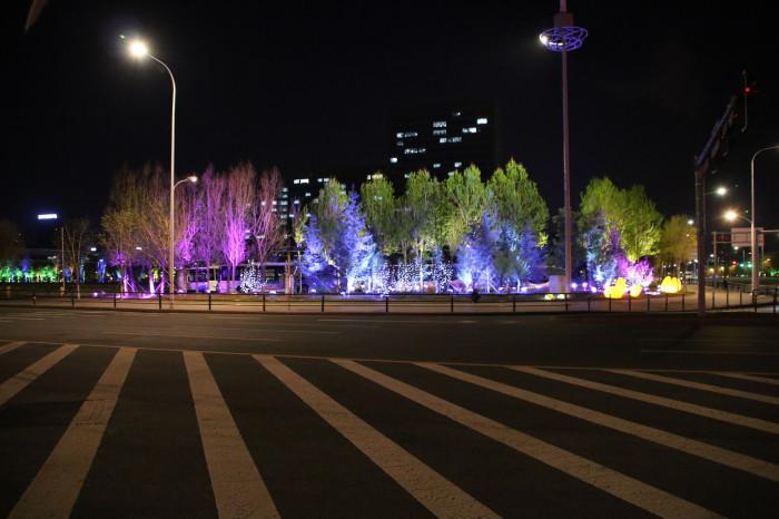 沈阳浑南大学城景观亮化工程夜景图9