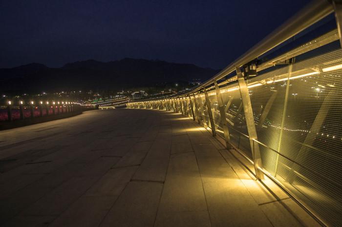 青岛世界园艺博览会鲜花大道景观亮化工程夜景图3