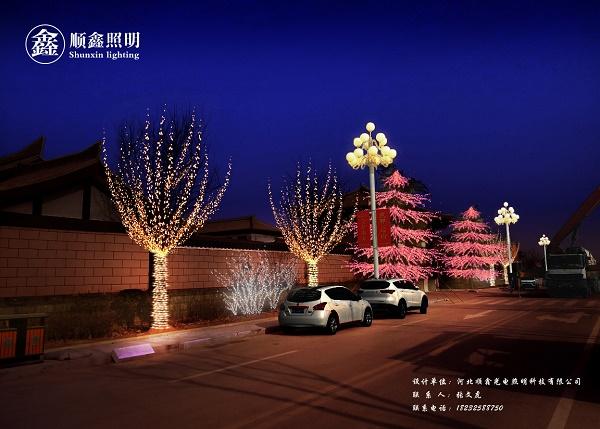 城市道路亮化效果图